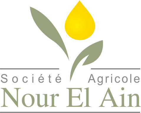 NOUR EL AIN AGRICOLE